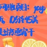 国外网赚项目:paypal拉新,10分钟5美刀,赶快通宵干【视频课程】